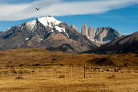 Central Tower - Torres del Paine National Park