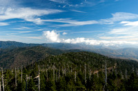 Clingman's Cove Dome