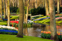 Gardens of Holland
