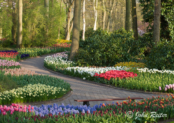 Spring Gardens Entrancing John Reiter Photography  Gardens Of Holland  A Spring Garden Design Decoration